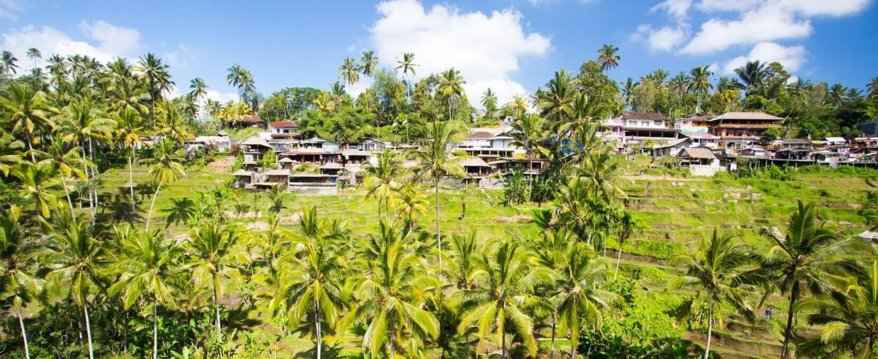 How about a holiday in Ubud? Catch a glimpse here