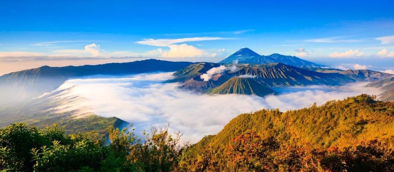 Homestays In Exciting East Java Bromo Ijen Malang Banyuwangi Indonesia Travel