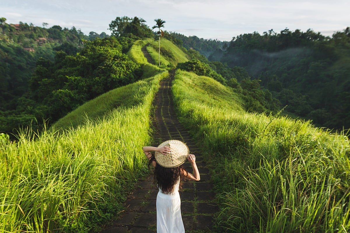 Image result for Campuhan Ridge Walk instagramable