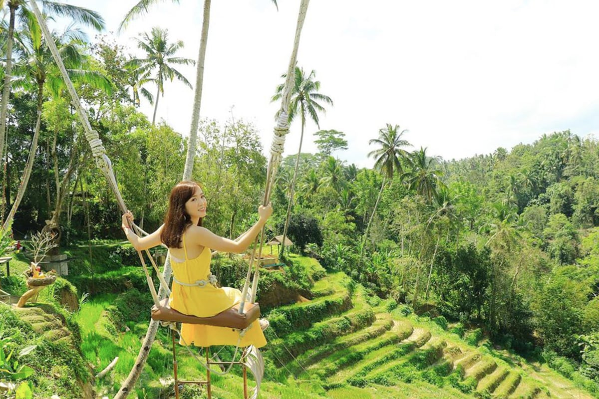 Image result for bali swing bali